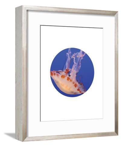 Jelly 3 Circle-Jetty Printables-Framed Art Print