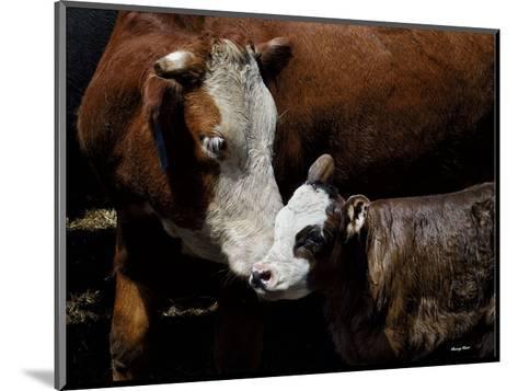 A Mother?s Love-Barry Hart-Mounted Art Print