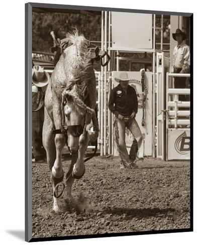 Better Luck Next Time-Barry Hart-Mounted Art Print