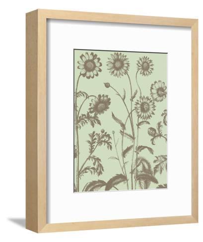 Chrysanthemum 11-Botanical Series-Framed Art Print
