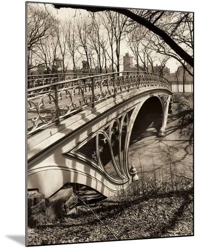 Central Park Bridges 3-Chris Bliss-Mounted Art Print