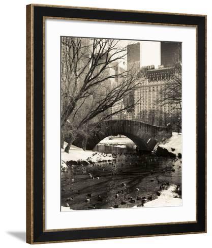 Central Park Bridges 4-Chris Bliss-Framed Art Print
