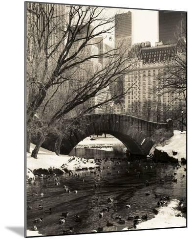 Central Park Bridges 4-Chris Bliss-Mounted Art Print
