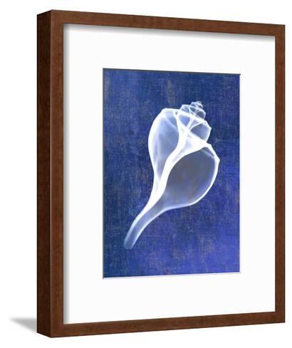 Channelled Whelk (indigo)-Bert Myers-Framed Art Print