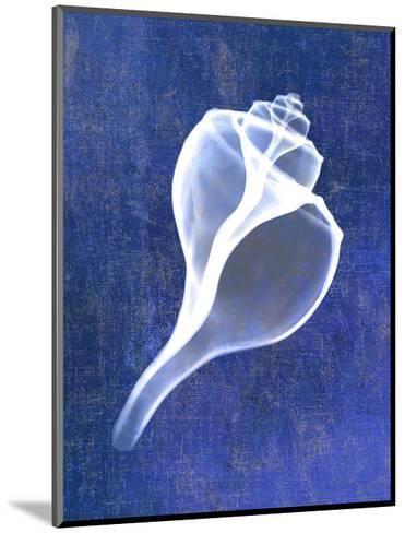 Channelled Whelk (indigo)-Bert Myers-Mounted Art Print