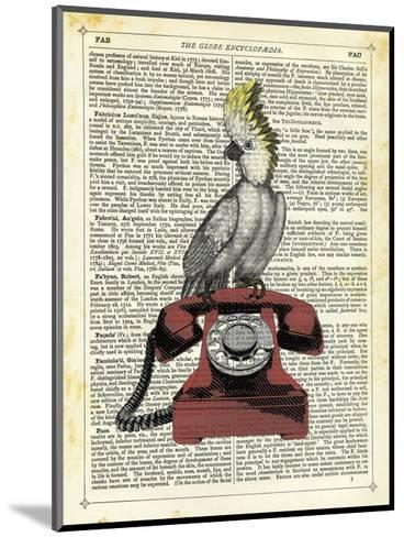 Cocatoo on Telephone-Marion Mcconaghie-Mounted Art Print