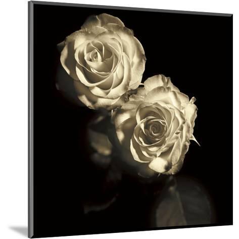 Circus Roses-Michael Harrison-Mounted Art Print