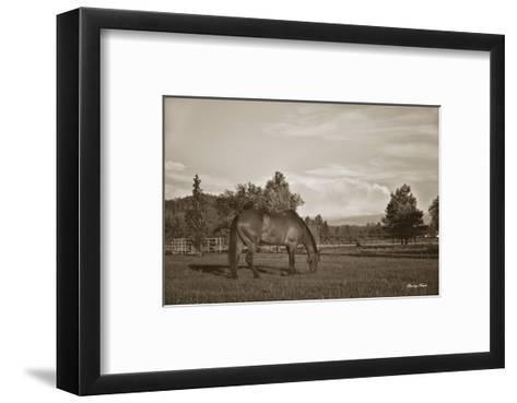 Copenhagen in Pasture-Barry Hart-Framed Art Print