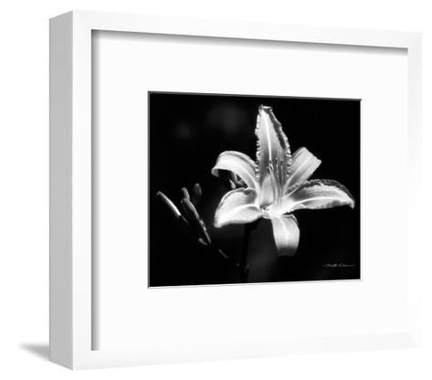 Day Lily-Harold Silverman-Framed Art Print