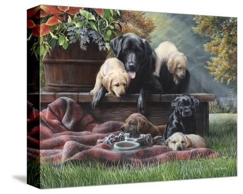 Cozy Moments-Kevin Daniel-Stretched Canvas Print