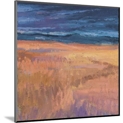 Deep Sky and Field-Jeannie Sellmer-Mounted Art Print