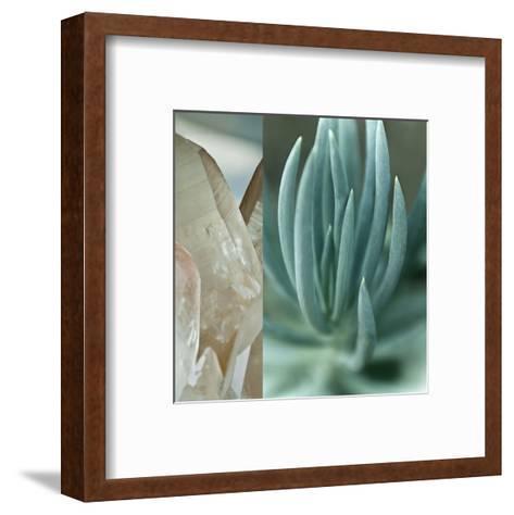 Desert Jewels I-Sidney Aver-Framed Art Print