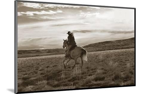 Dreamweaver-Barry Hart-Mounted Art Print