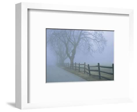 Remembrance-David Lorenz Winston-Framed Art Print