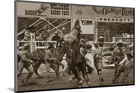 Rodeo Daze-Barry Hart-Mounted Art Print