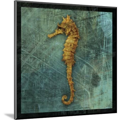 Seahorse-John W^ Golden-Mounted Art Print
