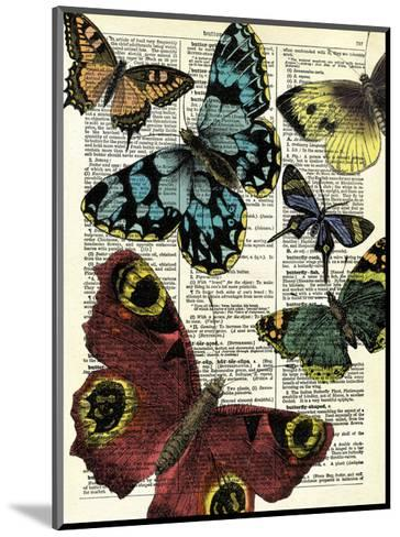 Selection of Butterflies-Marion Mcconaghie-Mounted Art Print