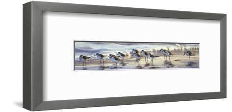 Shoreline Sanderlings-Matthew Hillier-Framed Art Print