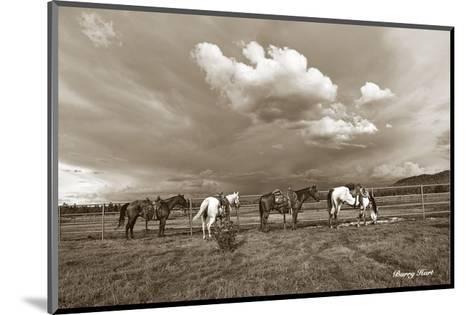 Storm Warning-Barry Hart-Mounted Art Print