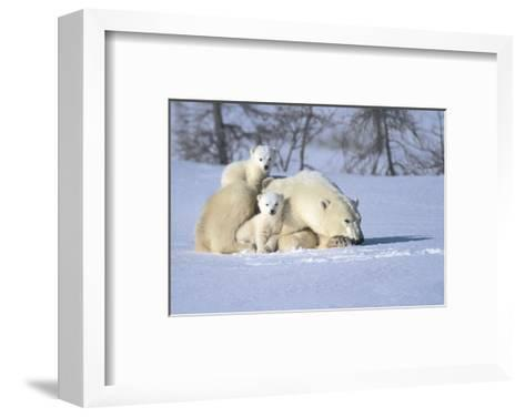 Time Out-Art Wolfe-Framed Art Print