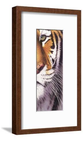 Tiger Eye-Mitch Ridder-Framed Art Print