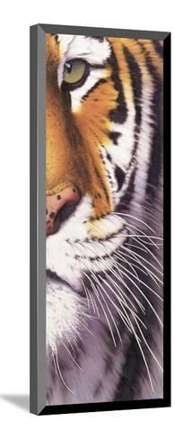 Tiger Eye-Mitch Ridder-Mounted Art Print