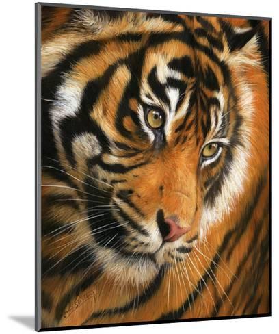 Tiger Face Portrait-David Stribbling-Mounted Art Print