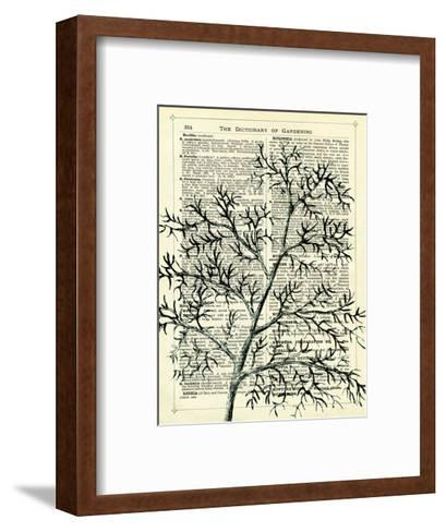 Twigs 1-Marion Mcconaghie-Framed Art Print