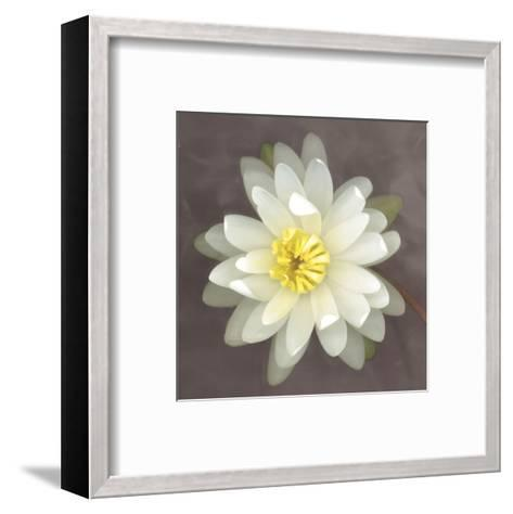 Water Lily-Erin Clark-Framed Art Print