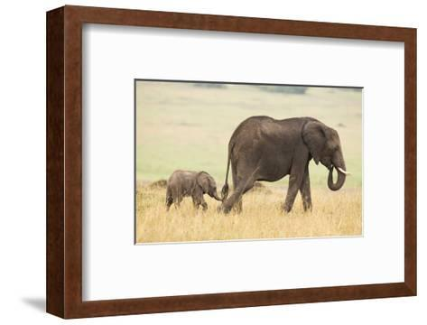 Wait for Me!-Mark Bridger-Framed Art Print