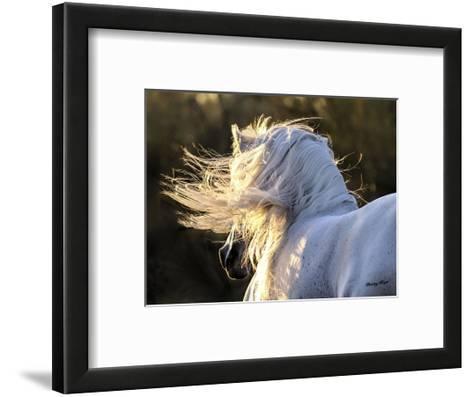 Winds Aloft-Barry Hart-Framed Art Print