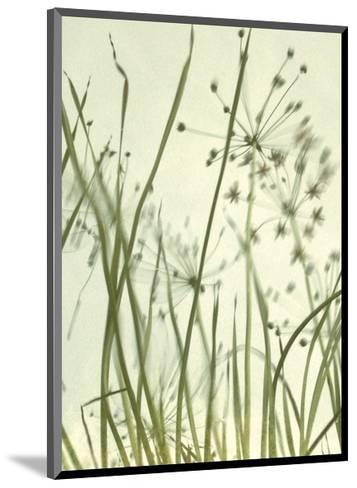 Watery Grasses 2-Jenny Kraft-Mounted Art Print