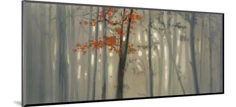 Fall Foliage-Seth Garrett-Mounted Art Print