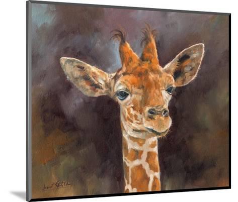 Giraffe Portrait-David Stribbling-Mounted Art Print