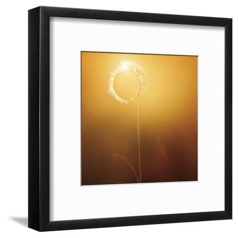Gilly-Bob Larson-Framed Art Print