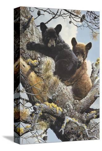 High Adventure (detail)-Carl Brenders-Stretched Canvas Print