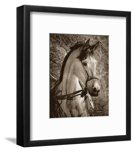 Impatiently Waiting-Barry Hart-Framed Art Print