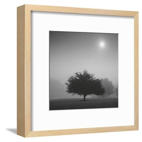 Judge-Moises Levy-Framed Art Print