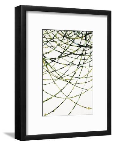 Moss Vine-Candice Alford-Framed Art Print