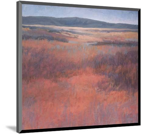 New Mexico Red-Jeannie Sellmer-Mounted Art Print