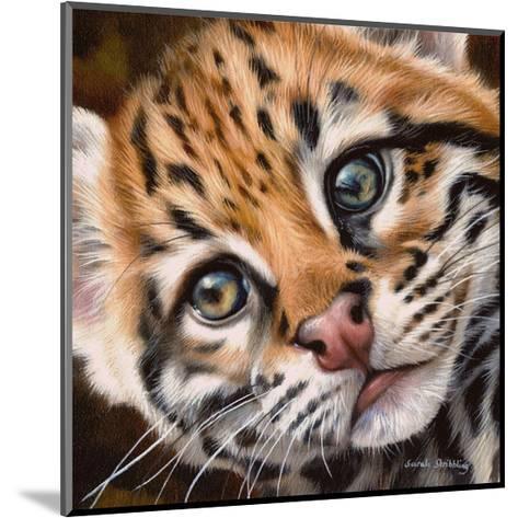 Ocelot Kitten-Sarah Stribbling-Mounted Art Print