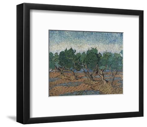Olive Grove, 1889-Vincent van Gogh-Framed Art Print