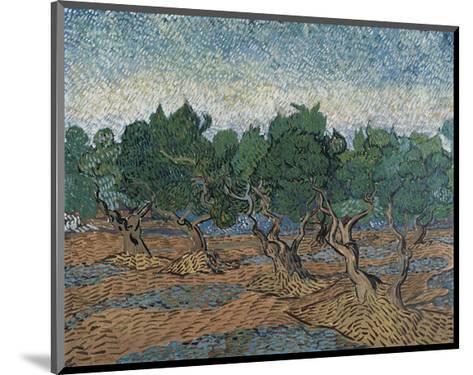 Olive Grove, 1889-Vincent van Gogh-Mounted Art Print