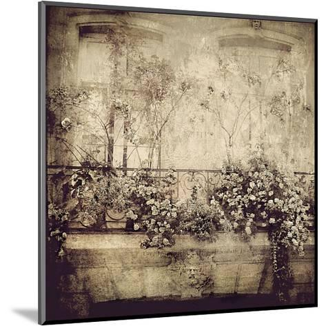 Paris Window Garden-Dawne Polis-Mounted Art Print