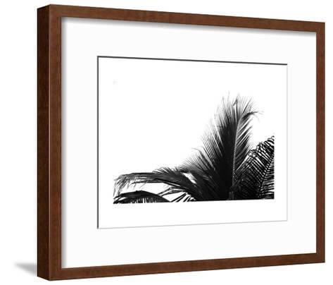 Palms 2-Jamie Kingham-Framed Art Print