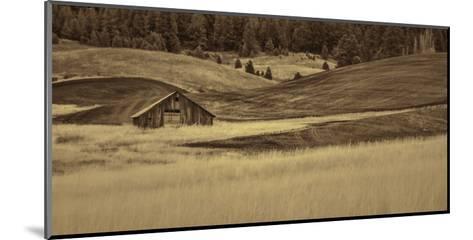 Brown Barn in the Blonde Gra-Don Schwartz-Mounted Art Print