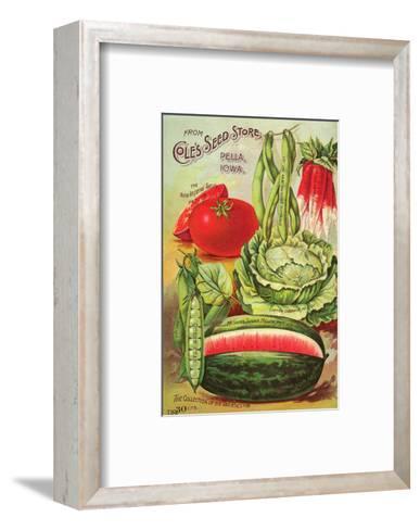 Cole's Seed Store Pella Iowa--Framed Art Print