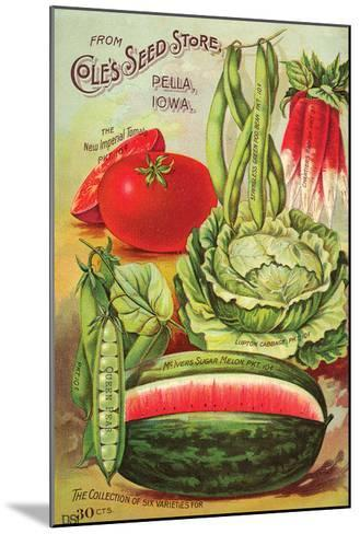 Cole's Seed Store Pella Iowa--Mounted Art Print