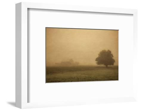 Schwartz - Foggy Barn-Don Schwartz-Framed Art Print