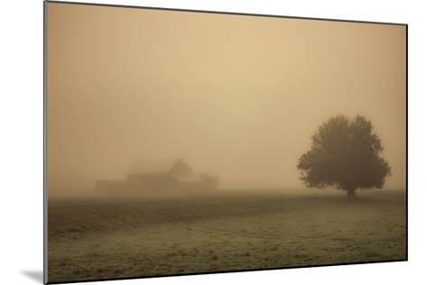 Schwartz - Foggy Barn-Don Schwartz-Mounted Premium Giclee Print